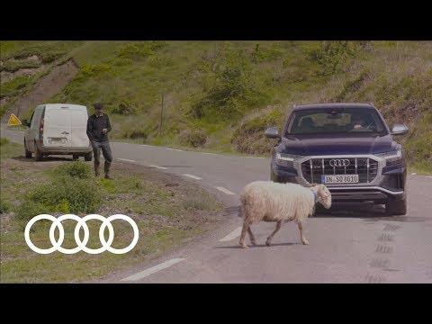 Trailer 2019 Audi SQ8 TDI